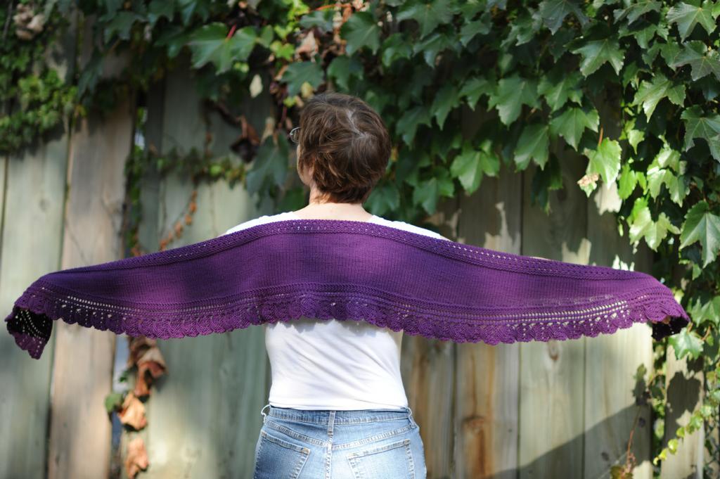 purple shawlette wingspan
